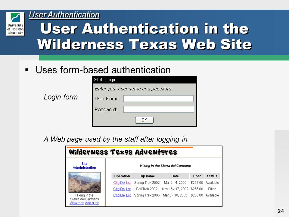 24 User Authentication in the Wilderness Texas Web Site  Uses form-based authentication User Authentication Login form A Web page used by the staff after logging in