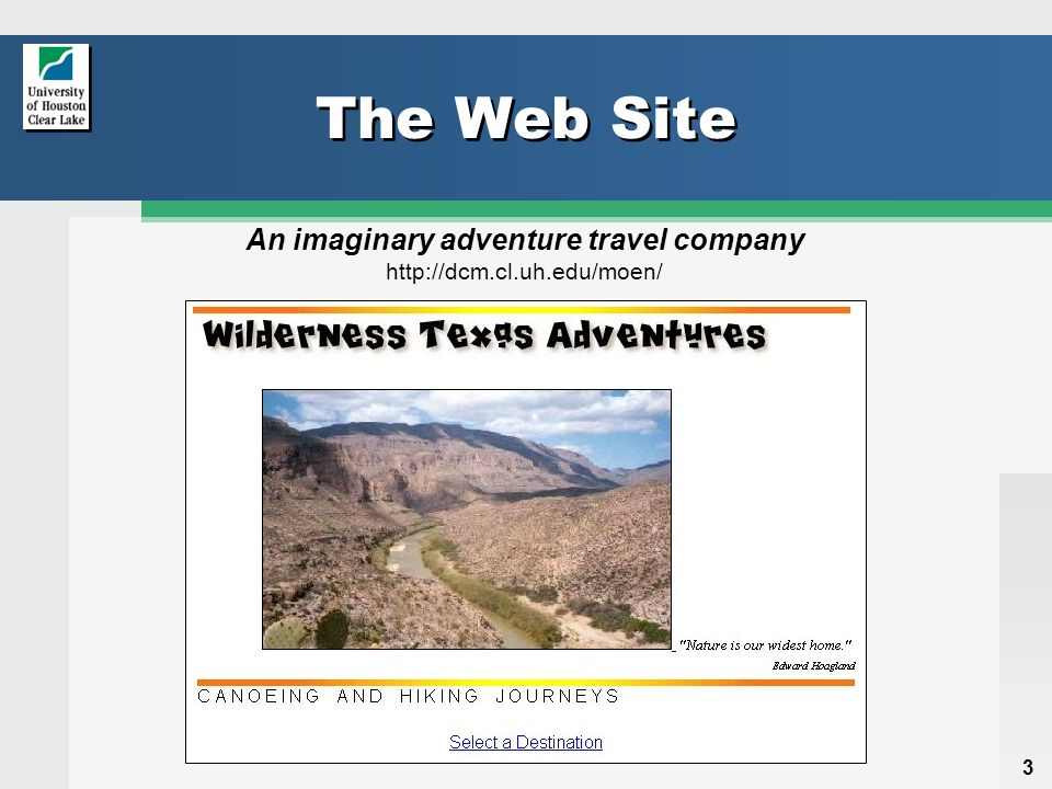 4 Its Purpose  Advertises the adventure travel trips available from the company  So that potential customers can View descriptions of the trips Sign up for and pay for trips  And the company staff can View lists of the trips and the customers who sign up for them Add or delete customers for each of the trips Add, change, and delete trips that are offered