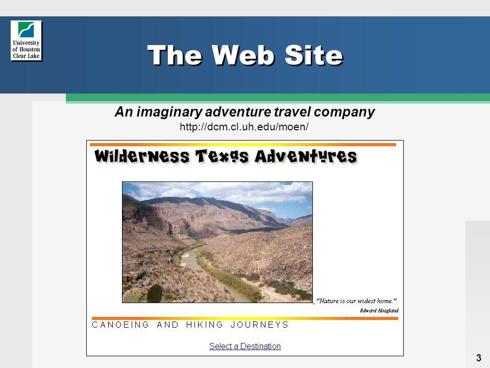 3 The Web Site An imaginary adventure travel company http://dcm.cl.uh.edu/moen/