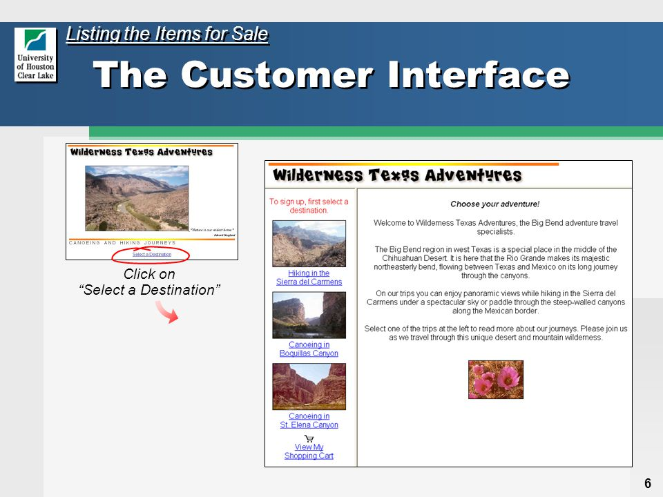 7 The Customer Interface Information about the travel company Static pages Frameset of regular HTML files Links will send a request for a PHP page along with a parameter embedded in the URL Hiking in the Sierra del Carmens Canoeing in Boquillas Canyon Listing the Items for Sale