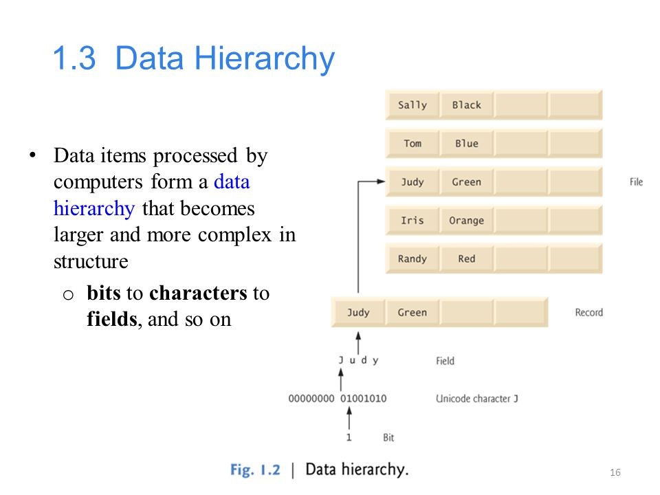 16 1.3 Data Hierarchy Data items processed by computers form a data hierarchy that becomes larger and more complex in structure o bits to characters t