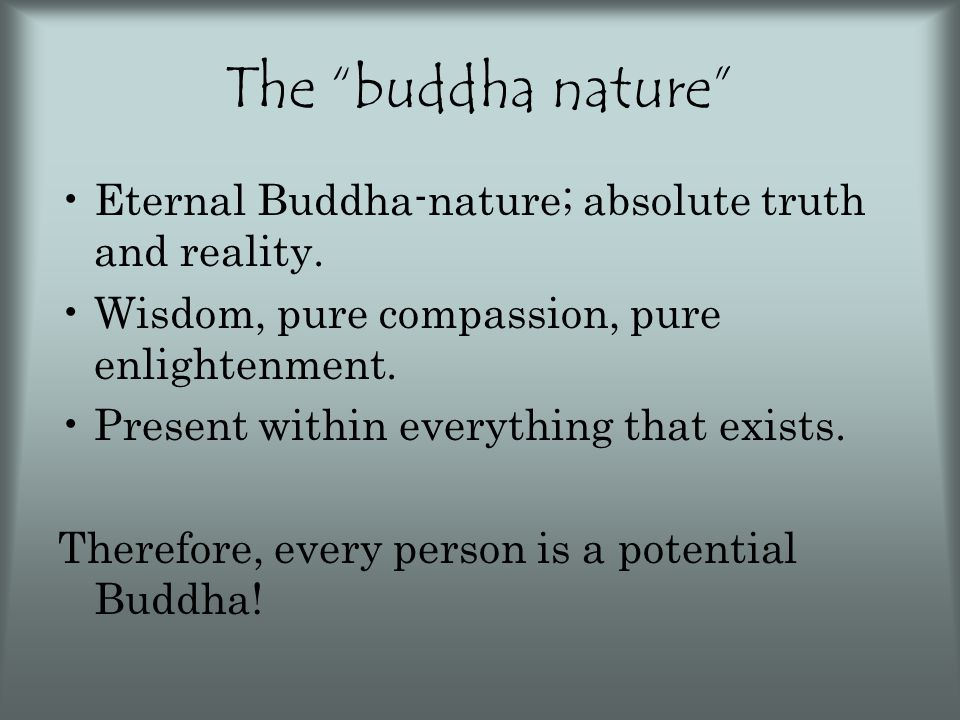 """The """"buddha nature"""" Eternal Buddha-nature; absolute truth and reality. Wisdom, pure compassion, pure enlightenment. Present within everything that exi"""