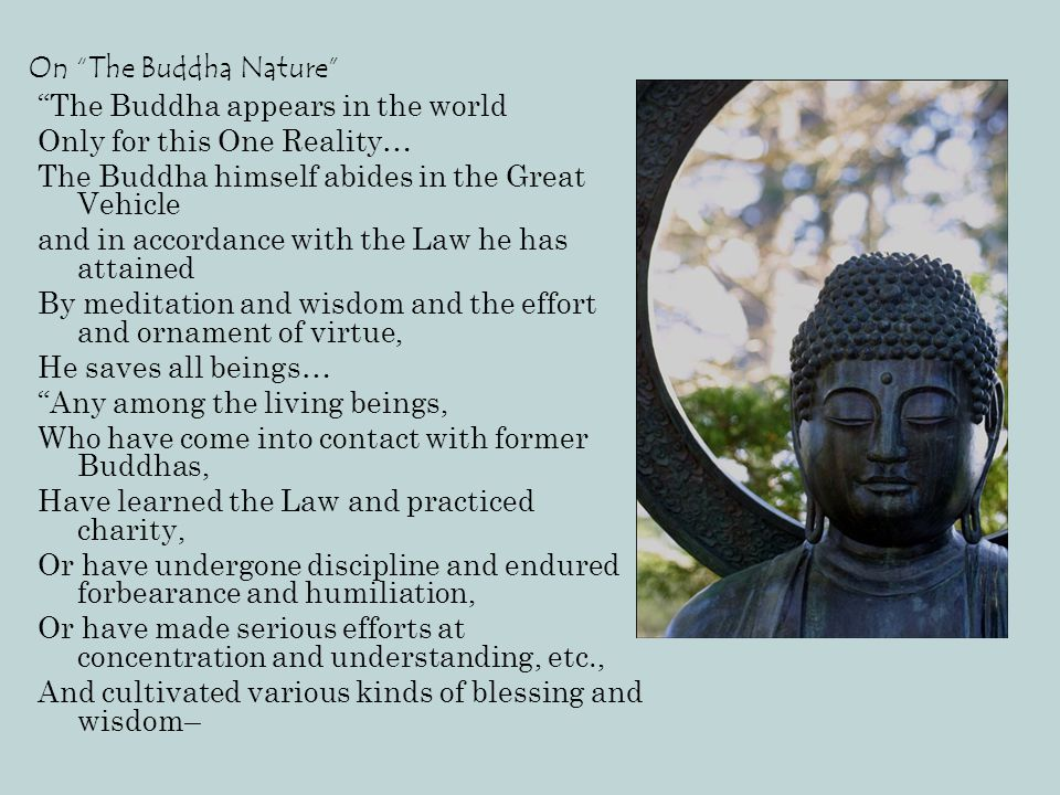 """On """"The Buddha Nature"""" """"The Buddha appears in the world Only for this One Reality… The Buddha himself abides in the Great Vehicle and in accordance wi"""