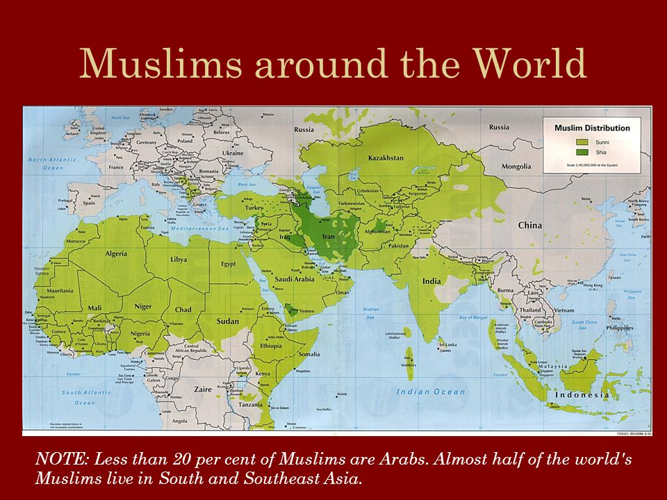 The sacred text of Islam : The Koran Organized into 114 chapters, called suras.