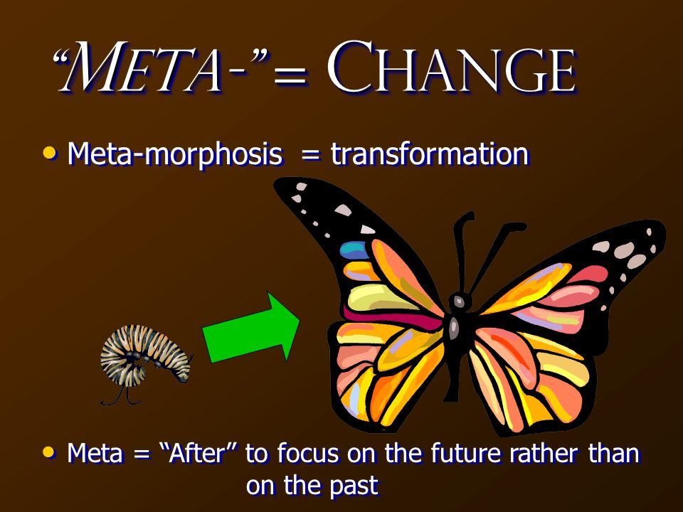 M eta- = C hange Meta-morphosis = transformation Meta = After to focus on the future rather than on the past