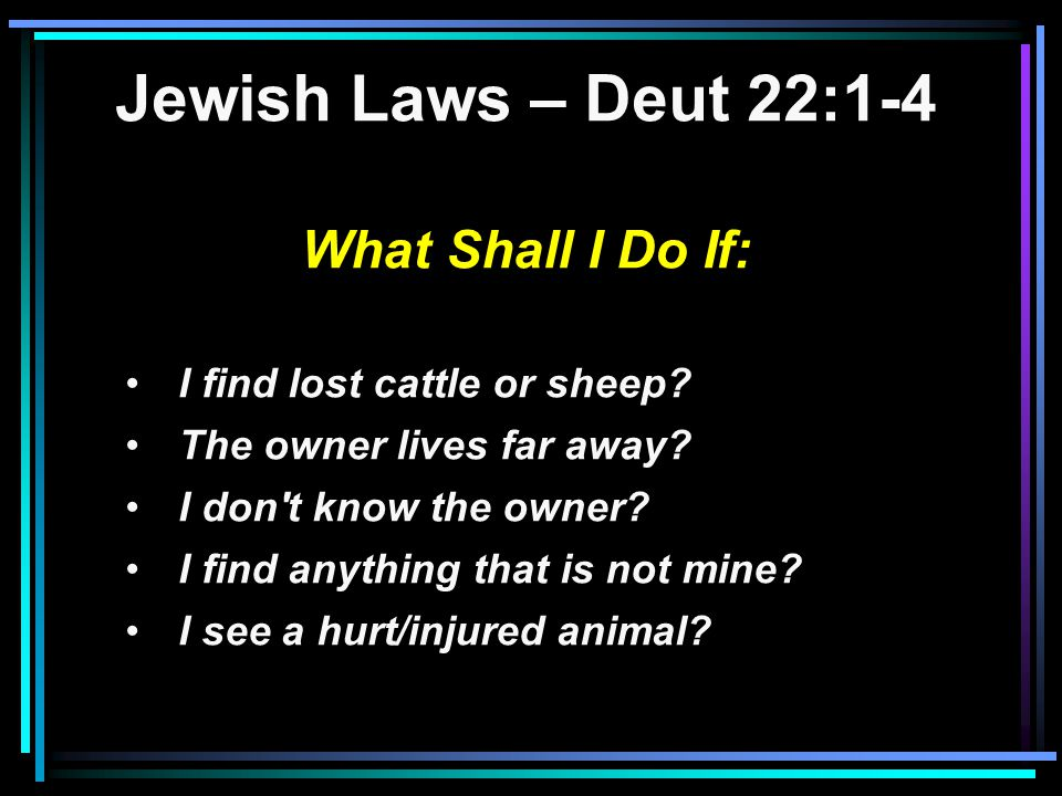 Jewish Laws – Deut 22:1-4 What Shall I Do If: I find lost cattle or sheep.
