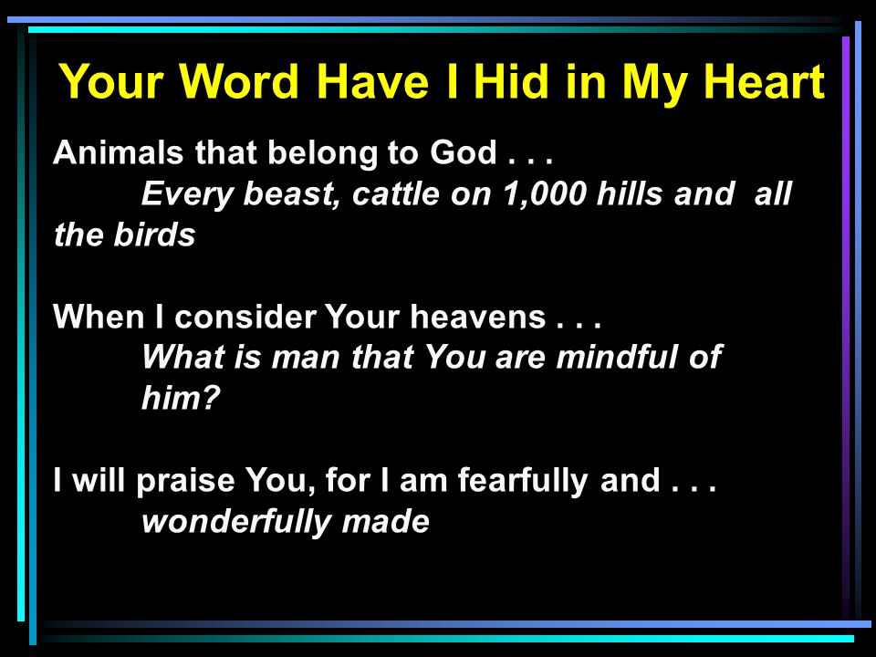 Your Word Have I Hid in My Heart Animals that belong to God...