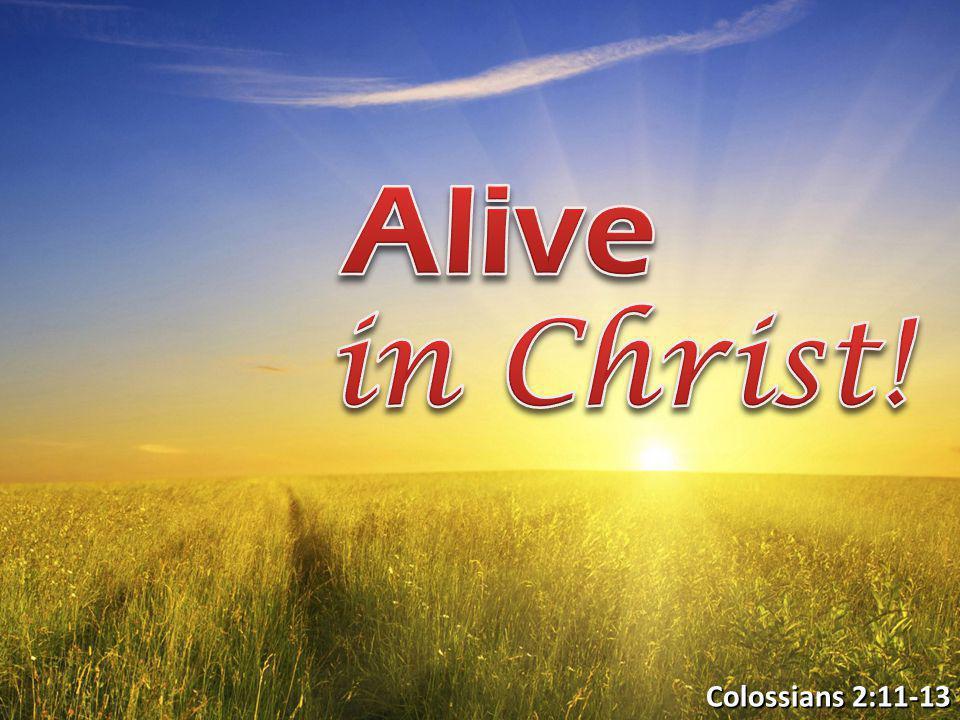 Colossians 2:11-13