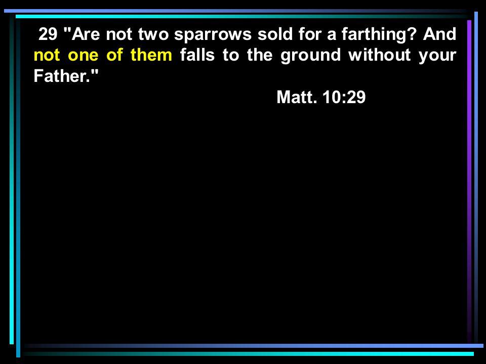 Matt. 10:29