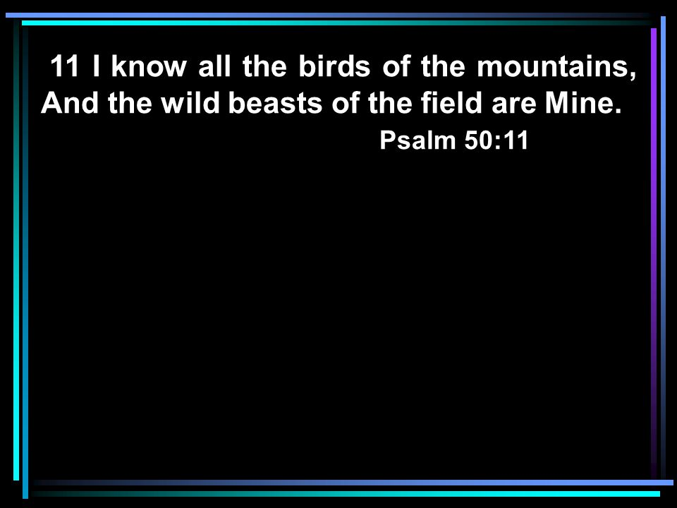 11 I know all the birds of the mountains, And the wild beasts of the field are Mine. Psalm 50:11