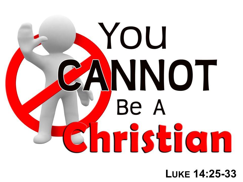 L UKE 14:25-33