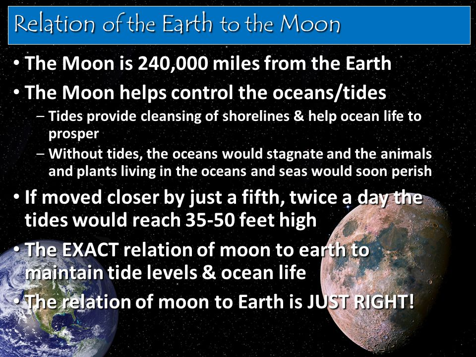 Relation of the Earth to the Moon The Moon is 240,000 miles from the Earth The Moon is 240,000 miles from the Earth The Moon helps control the oceans/tides The Moon helps control the oceans/tides –Tides provide cleansing of shorelines & help ocean life to prosper –Without tides, the oceans would stagnate and the animals and plants living in the oceans and seas would soon perish If moved closer by just a fifth, twice a day the tides would reach 35-50 feet high If moved closer by just a fifth, twice a day the tides would reach 35-50 feet high The EXACT relation of moon to earth to maintain tide levels & ocean life The EXACT relation of moon to earth to maintain tide levels & ocean life The relation of moon to Earth is JUST RIGHT.