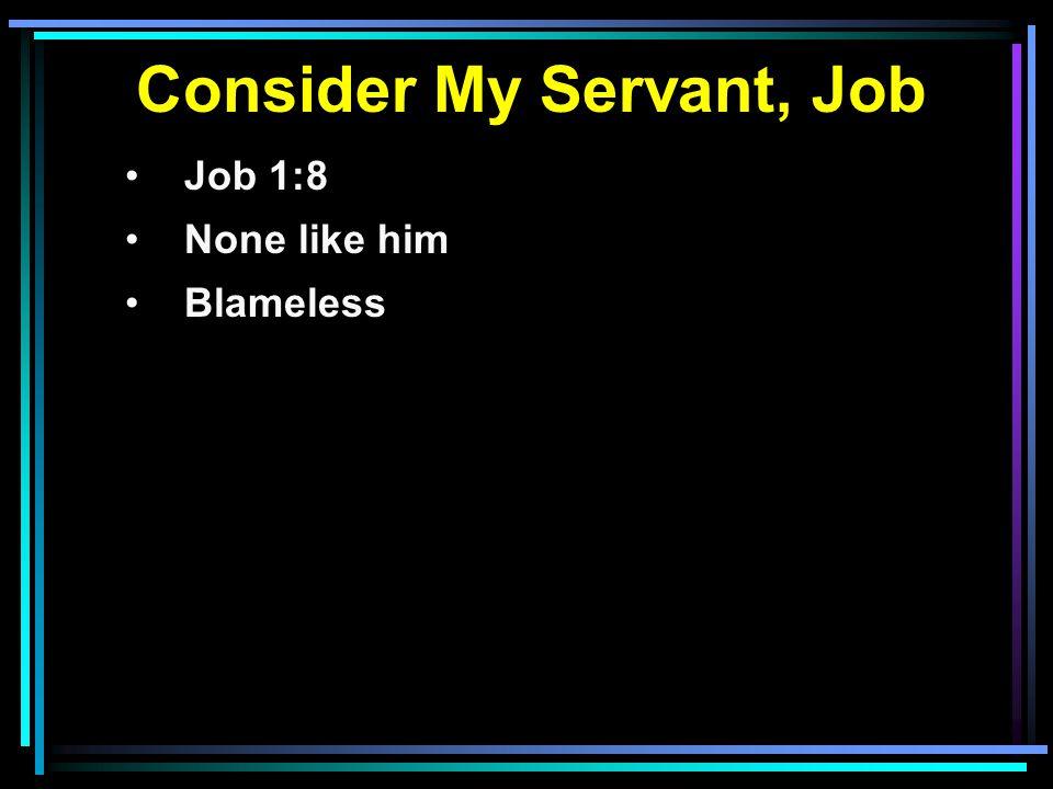 Consider My Servant, Job Job 1:8 None like him Blameless