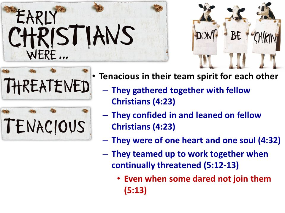 Tenacious in their team spirit for each other – They gathered together with fellow Christians (4:23) – They confided in and leaned on fellow Christians (4:23) – They were of one heart and one soul (4:32) – They teamed up to work together when continually threatened (5:12-13) Even when some dared not join them (5:13)