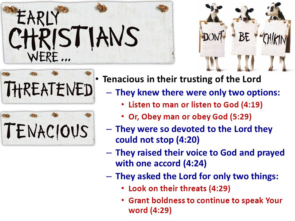 Tenacious in their trusting of the Lord – They knew there were only two options: Listen to man or listen to God (4:19) Or, Obey man or obey God (5:29) – They were so devoted to the Lord they could not stop (4:20) – They raised their voice to God and prayed with one accord (4:24) – They asked the Lord for only two things: Look on their threats (4:29) Grant boldness to continue to speak Your word (4:29)