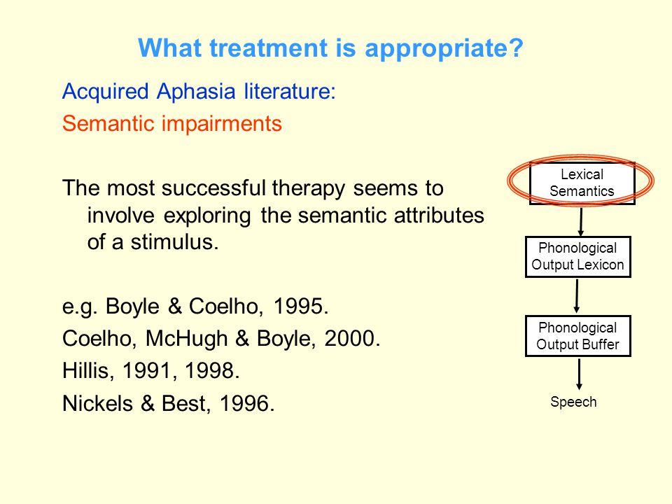 What treatment is appropriate? Acquired Aphasia literature: Semantic impairments The most successful therapy seems to involve exploring the semantic a