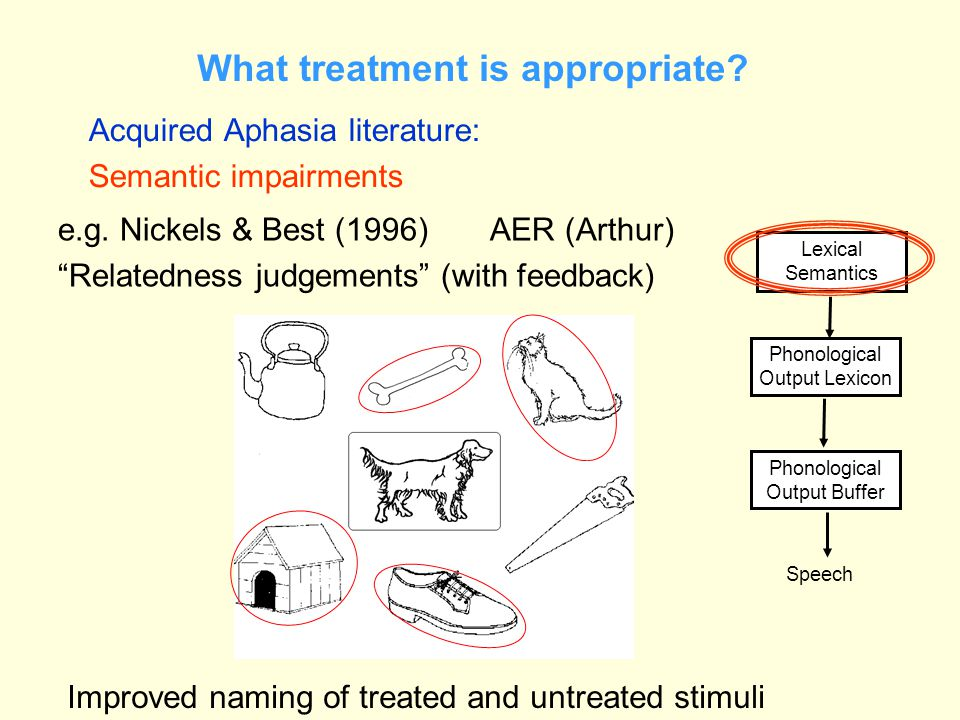 What treatment is appropriate? Acquired Aphasia literature: Semantic impairments Phonological Output Buffer Speech Phonological Output Lexicon Lexical