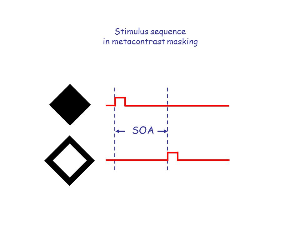 Stimulus sequence in metacontrast masking SOA