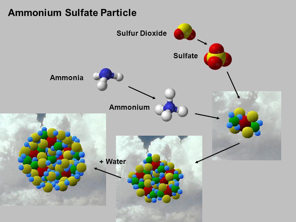 Sulfur Dioxide Sulfate Ammonia Ammonium Ammonium Sulfate Particle + Water