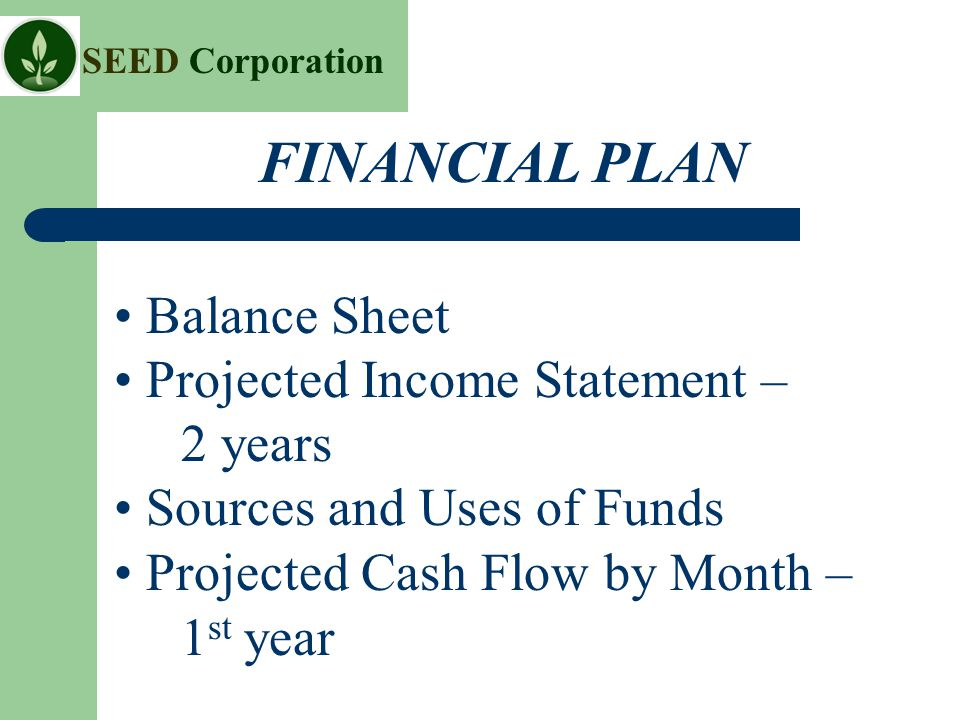 SEED Corporation Balance Sheet Projected Income Statement – 2 years Sources and Uses of Funds Projected Cash Flow by Month – 1 st year FINANCIAL PLAN