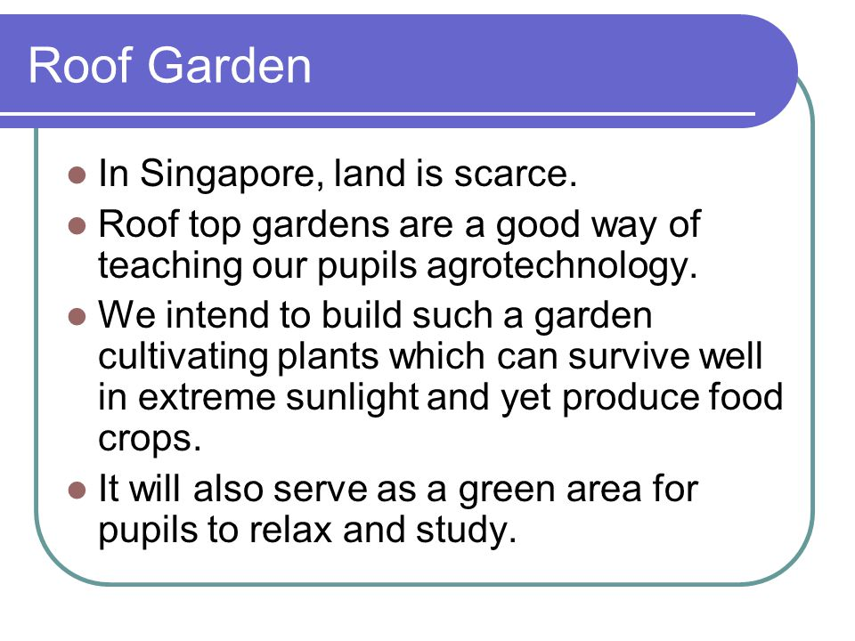 Roof Garden In Singapore, land is scarce. Roof top gardens are a good way of teaching our pupils agrotechnology. We intend to build such a garden cult