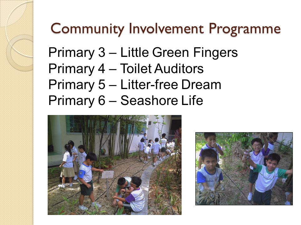 Community Involvement Programme Primary 3 – Little Green Fingers Primary 4 – Toilet Auditors Primary 5 – Litter-free Dream Primary 6 – Seashore Life