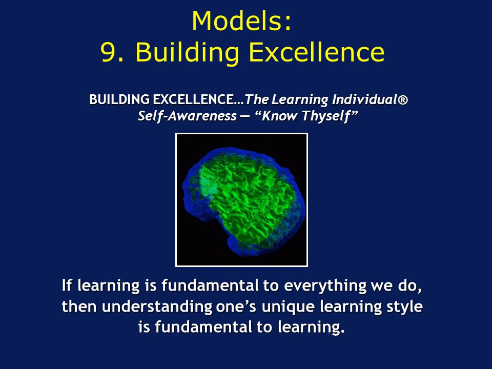 If learning is fundamental to everything we do, then understanding one's unique learning style is fundamental to learning. BUILDING EXCELLENCE…The Lea