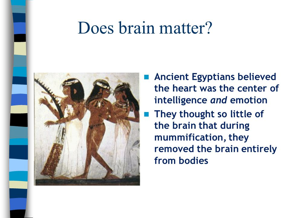 Does brain matter? Ancient Egyptians believed the heart was the center of intelligence and emotion They thought so little of the brain that during mum