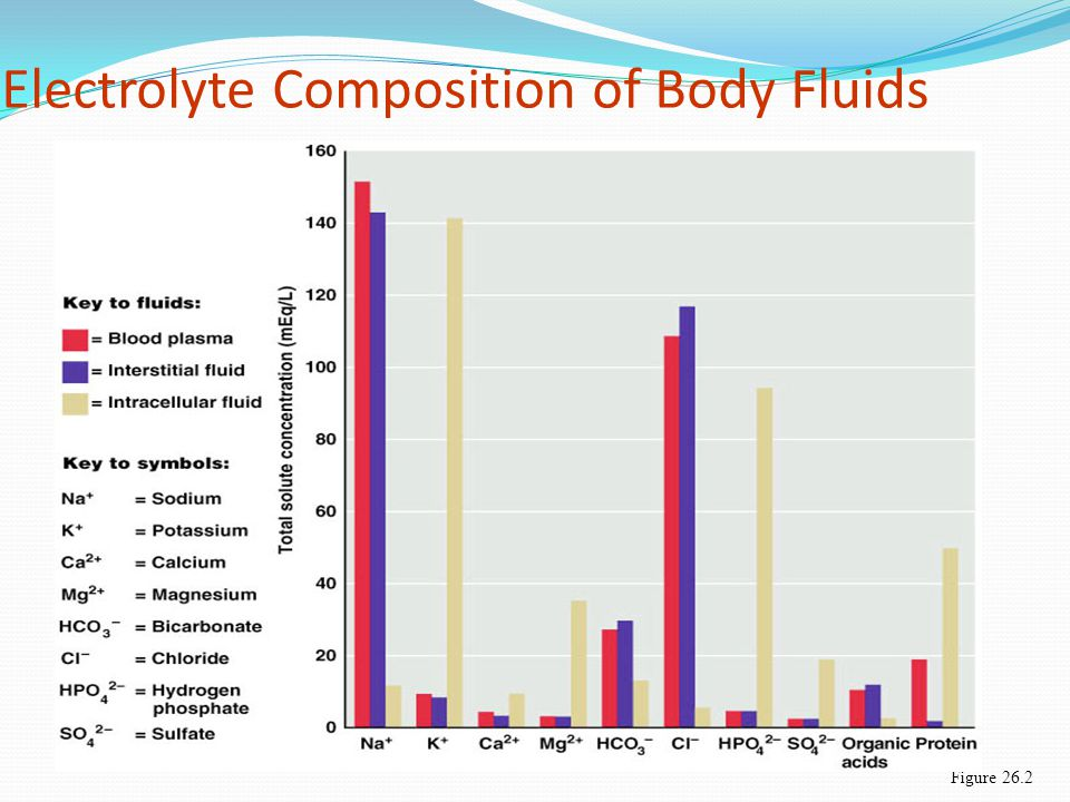 Electrolyte Composition of Body Fluids Figure 26.2