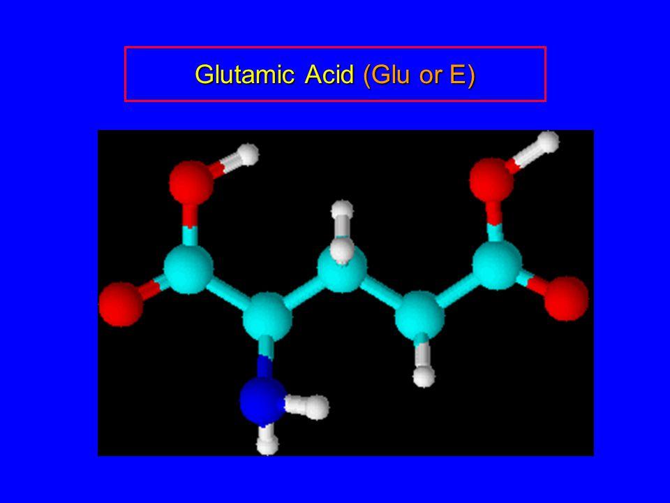Glutamic Acid (Glu or E)