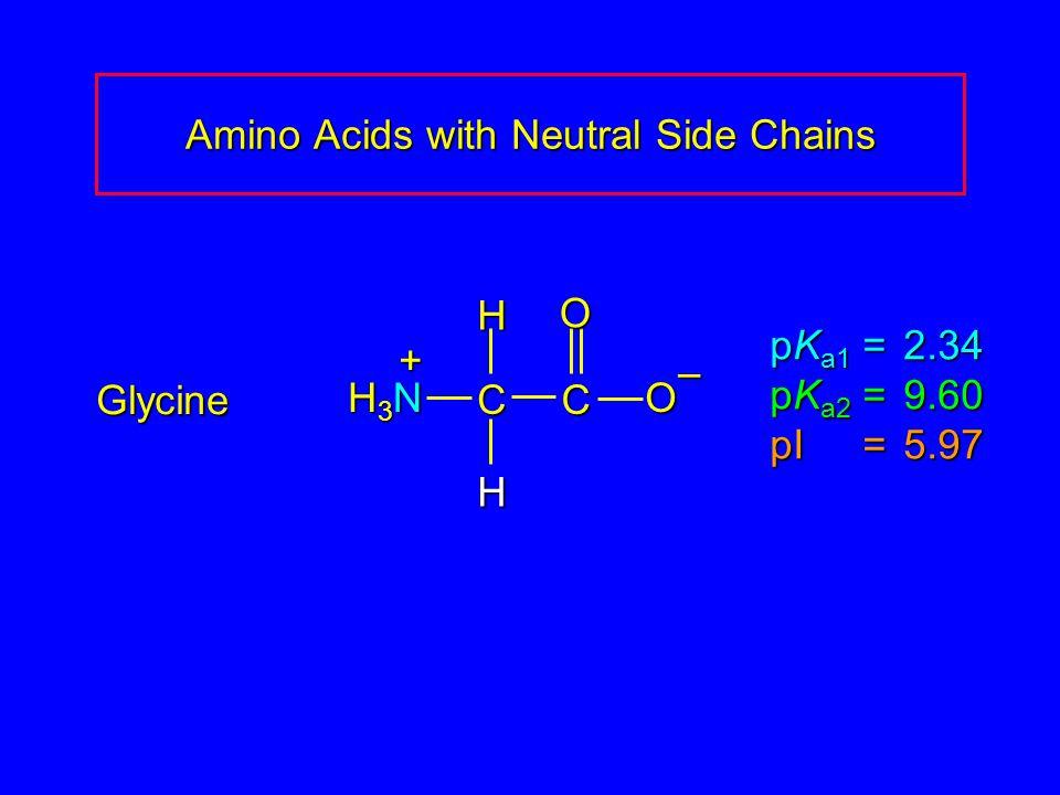 Amino Acids with Neutral Side Chains CCOO – H H H3NH3NH3NH3N + Glycine pK a1 = 2.34 pK a2 =9.60 pI =5.97