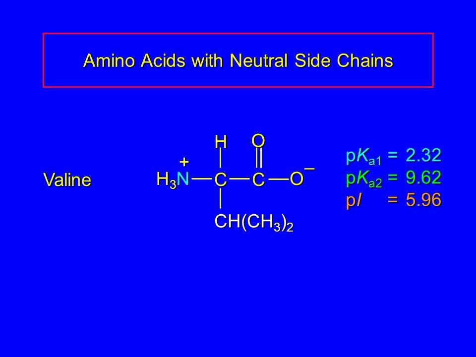 Amino Acids with Neutral Side Chains Valine pK a1 = 2.32 pK a2 =9.62 pI =5.96 H3NH3NH3NH3N CCOO – CH(CH 3 ) 2 H +