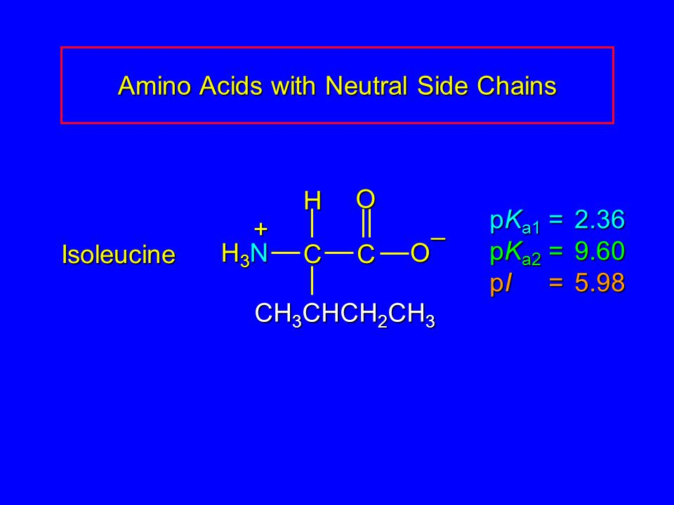 Amino Acids with Neutral Side Chains Isoleucine pK a1 = 2.36 pK a2 =9.60 pI =5.98 H3NH3NH3NH3N CC O O – CH 3 CHCH 2 CH 3 H +