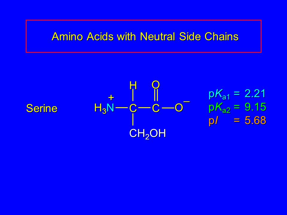 Amino Acids with Neutral Side Chains Amino Acids with Neutral Side Chains Serine pK a1 = 2.21 pK a2 =9.15 pI =5.68 H3NH3NH3NH3N CCOO – CH 2 OH H +