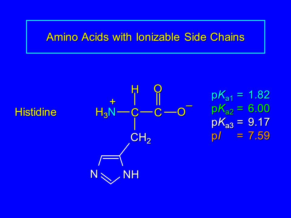 Amino Acids with Ionizable Side Chains Histidine pK a1 = 1.82 pK a2 =6.00 pK a3 =9.17 pI =7.59 H3NH3NH3NH3N CCOO – H + CH 2 NH N