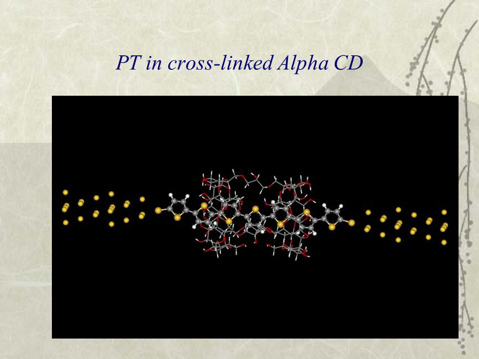 PT in cross-linked Alpha CD