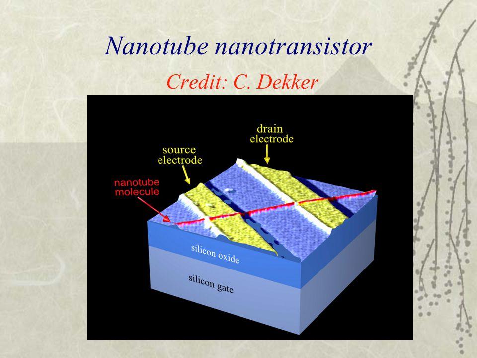 Nanotube nanotransistor Credit: C. Dekker