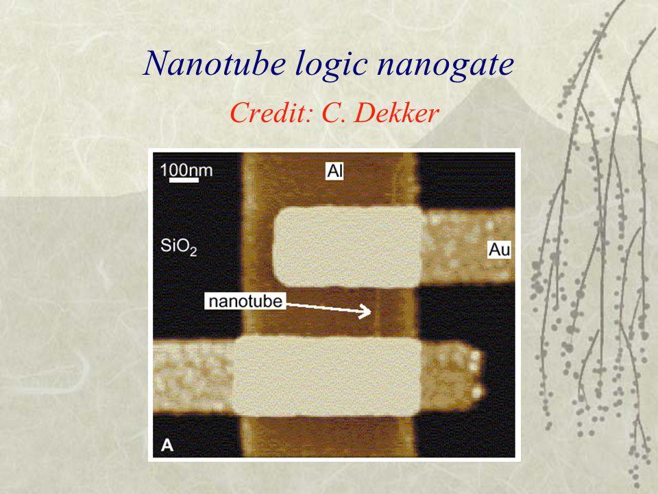 Nanotube logic nanogate Credit: C. Dekker