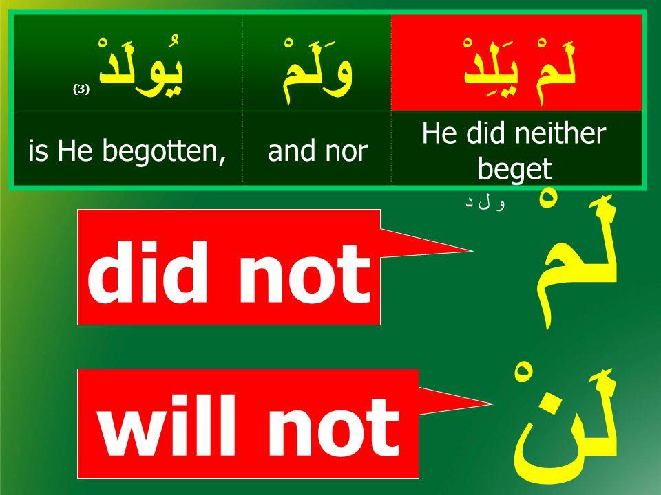 لَمْ يَلِدْ وَلَمْيُولَدْ ( 3) He did neither beget and noris He begotten, did not will not لَمْ لَنْ و ل د