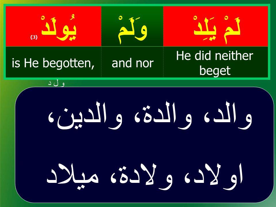 لَمْ يَلِدْ وَلَمْيُولَدْ ( 3) He did neither beget and noris He begotten, و ل د والد، والدۃ، والدين، اولاد، ولادة، ميلاد