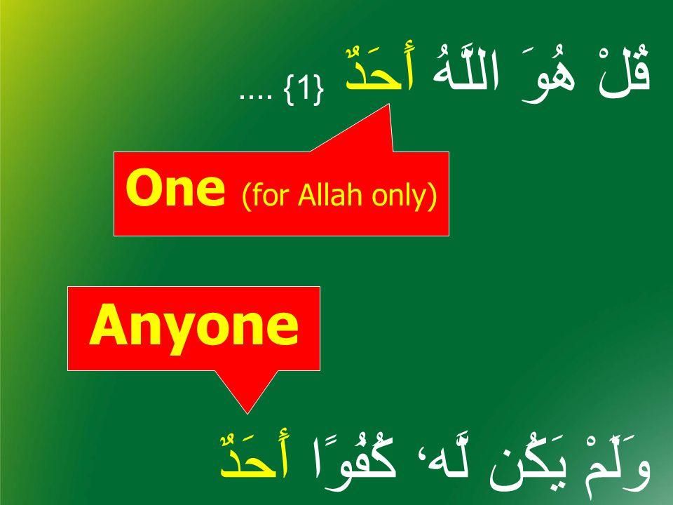 One (for Allah only) Anyone قُلْ هُوَ اللَّهُ أَحَدٌ {1}.... وَلَمْ يَكُن لَّه ، كُفُوًا أَحَدٌ {4}