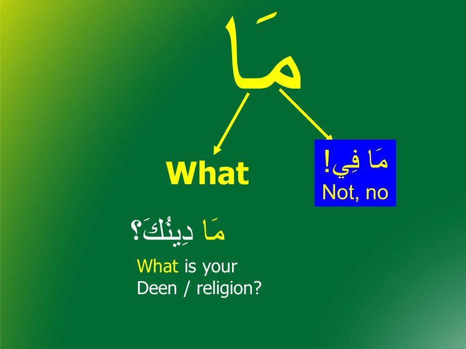 مَا مَا دِينُكَ؟ What What is your Deen / religion مَا فِي! Not, no