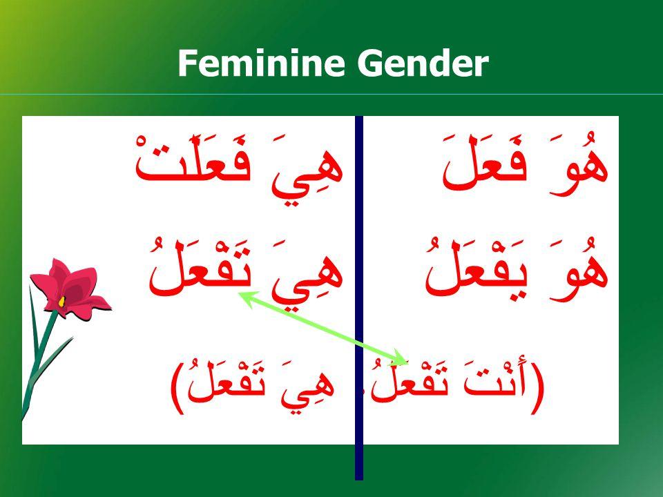 Feminine Gender هُوَ فَعَلَ هِيَ فَعَلَتْ هُوَ يَفْعَلُهِيَ تَفْعَلُ ( أَنْتَ تَفْعَلُ، هِيَ تَفْعَلُ )