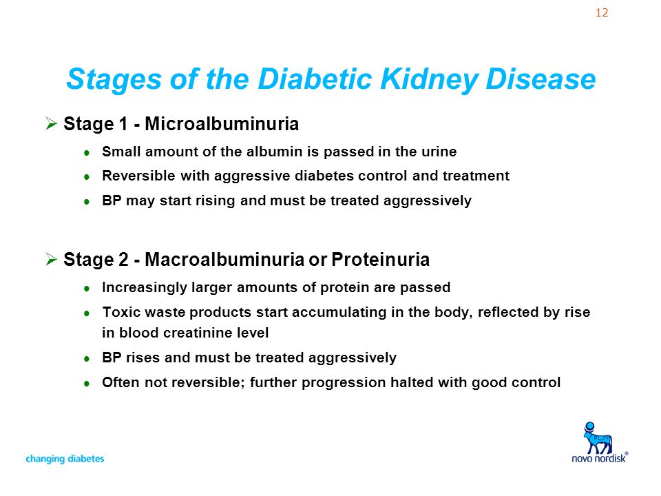 12 Stages of the Diabetic Kidney Disease  Stage 1 - Microalbuminuria l Small amount of the albumin is passed in the urine l Reversible with aggressiv