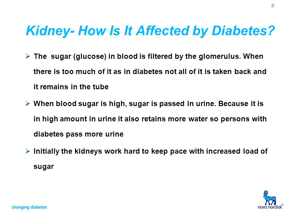 8 Kidney- How Is It Affected by Diabetes?  The sugar (glucose) in blood is filtered by the glomerulus. When there is too much of it as in diabetes no