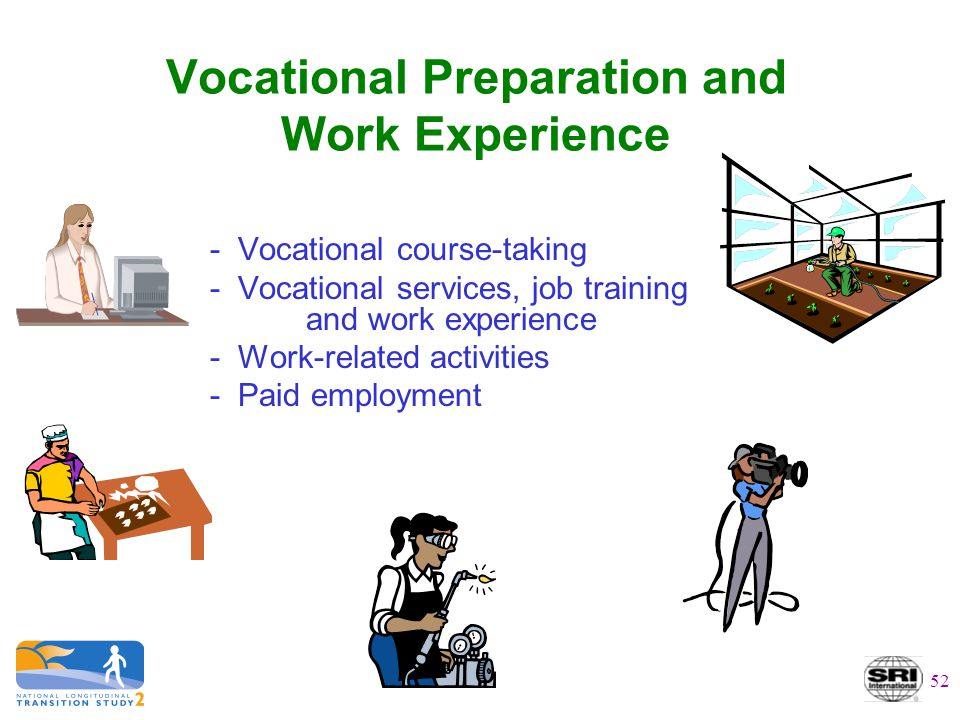 Vocational Preparation and Work Experience - Vocational course-taking - Vocational services, job training and work experience - Work-related activitie