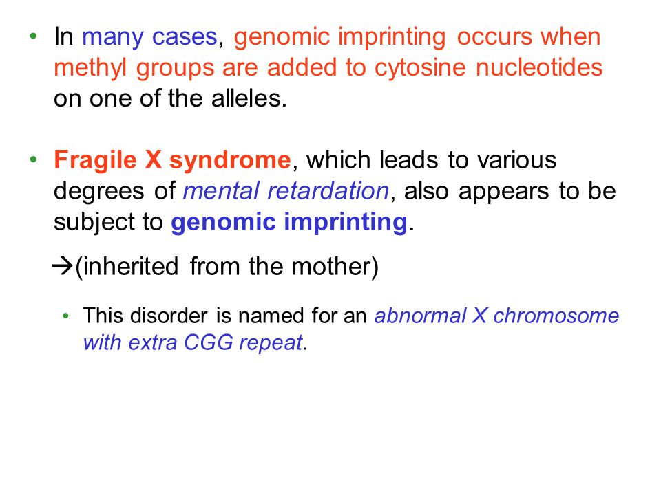 In many cases, genomic imprinting occurs when methyl groups are added to cytosine nucleotides on one of the alleles. Fragile X syndrome, which leads t