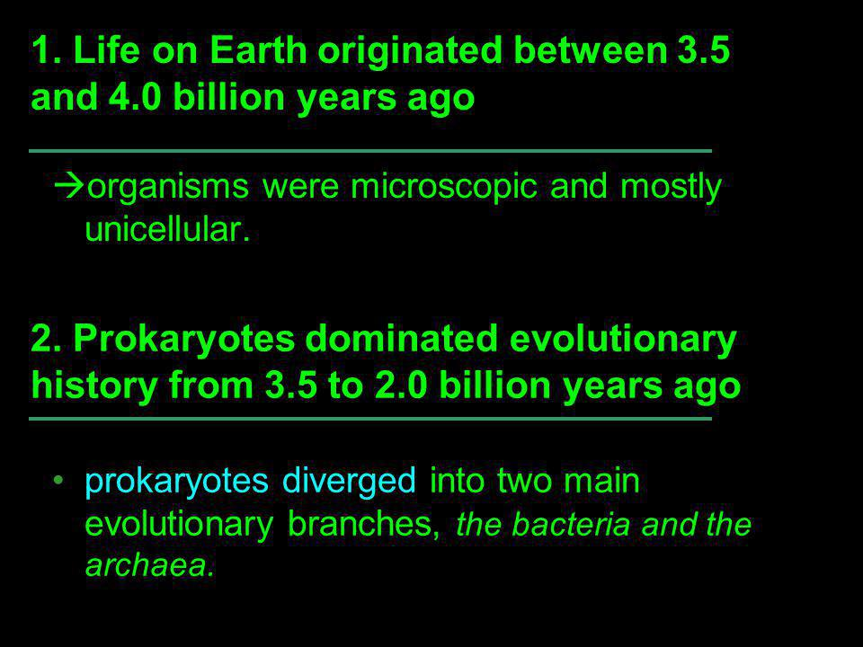 Living cells may have been preceded by protobionts, aggregates of abiotically produced molecules.