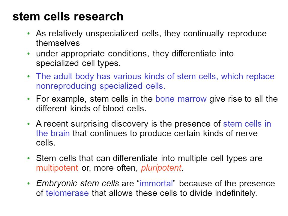 stem cells research As relatively unspecialized cells, they continually reproduce themselves under appropriate conditions, they differentiate into spe