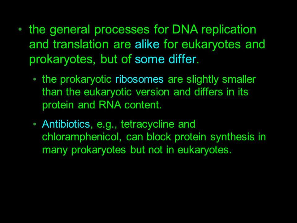 the general processes for DNA replication and translation are alike for eukaryotes and prokaryotes, but of some differ. the prokaryotic ribosomes are